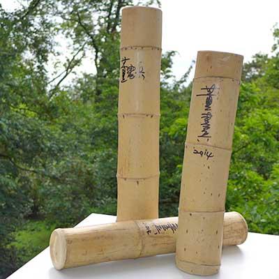 Erste Hilfe, Dong Shubing, Bambus